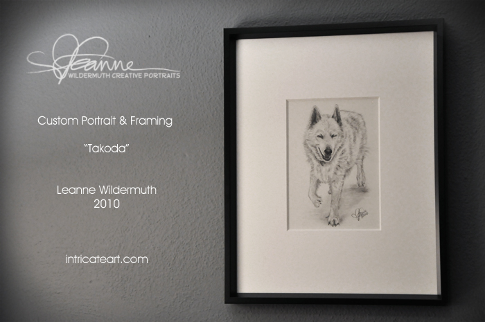 Custom dog portrait german shepherd drawing by Leanne Wildermuth
