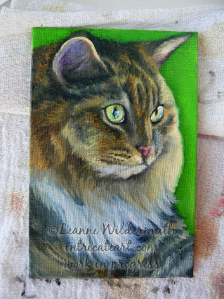 cat portrait painting work in progress