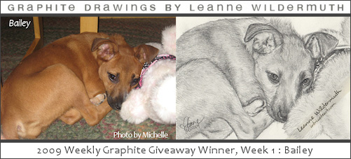 Custom portrait giveaway week 1 dog portrait by Leanne Wildermuth