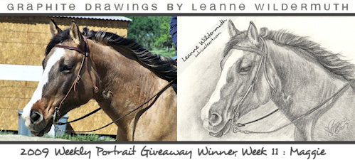horse drawing portrait by Leanne Wildermuth