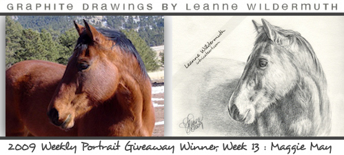 horse portrait pencil drawing by Leanne Wildermuth