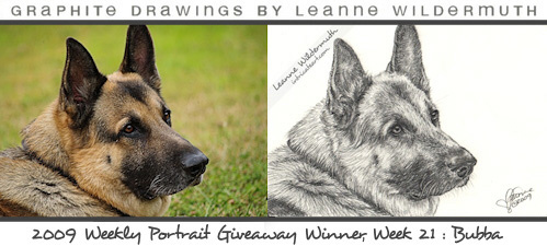 Custom german shepherd dog portrait giveaway pencil drawing by Leanne Wildermuth