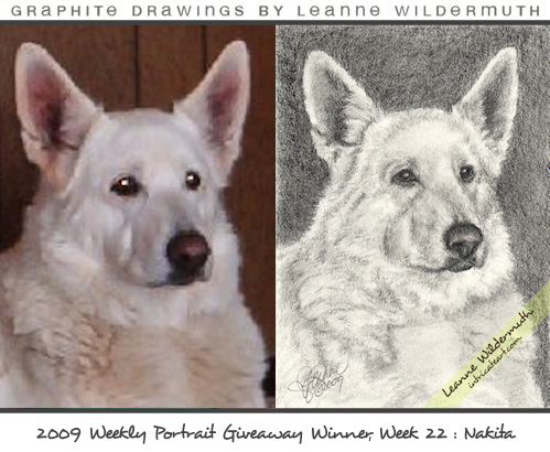 custom dog portrait by Leanne Wildermuth