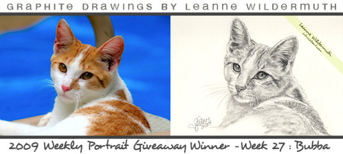 cat portrait orange tabby pencil drawing by Leanne Wildermuth