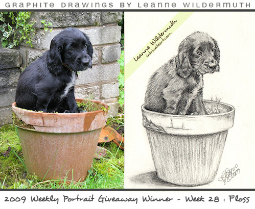 puppy dog portrait pencil drawing by Leanne Wildermuth