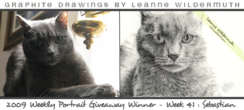 cat portrait gray tabby pencil drawing by Leanne Wildermuth