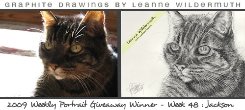 custom cat portrait pencil drawing by Leanne Wildermuth