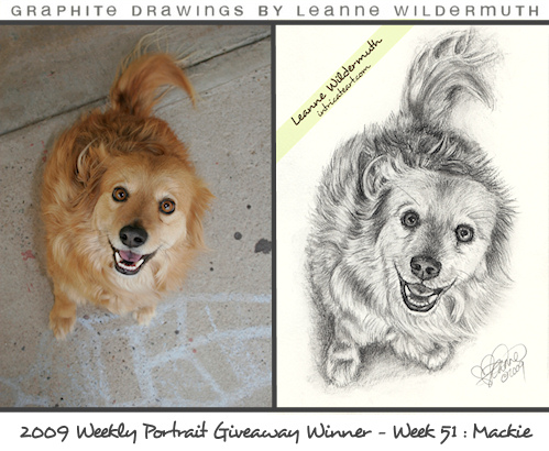 custom dog portrait pencil drawing by Leanne Wildermuth
