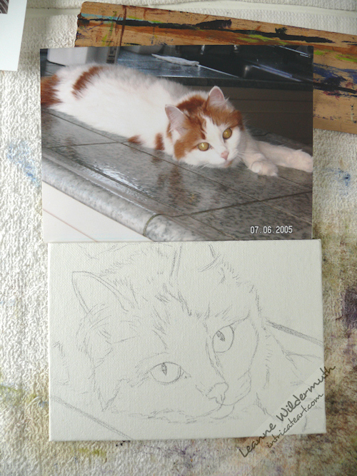 cat portrat, orange white tabby oil painting sketch by Leanne Wildermuth