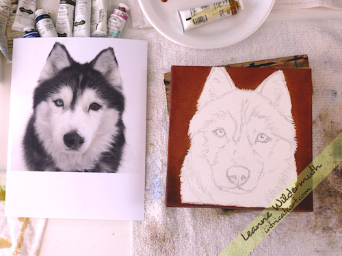 Taysia Blue Husky dog portrait by Leanne Wildermuth
