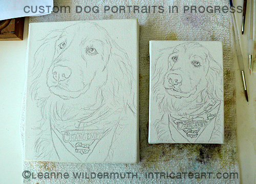 custom dog portrait paintings golden retriever sketches leanne wildermuth