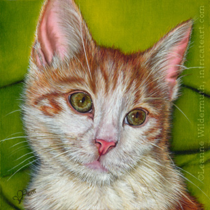 Leanne Wildermuth Artist By Nature 187 Archive 187 Cat